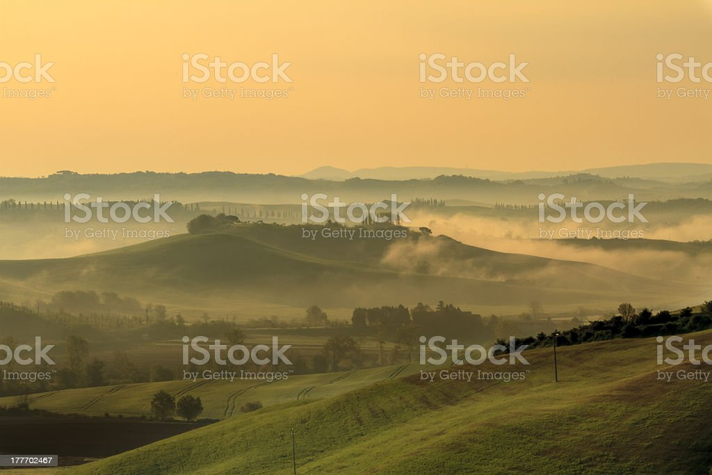 Tuscan landscape in yellow light royalty-free stock photo