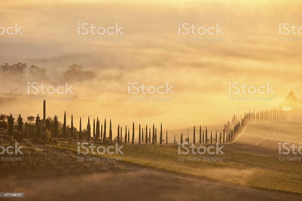 Tuscan Landscape With Fog royalty-free stock photo