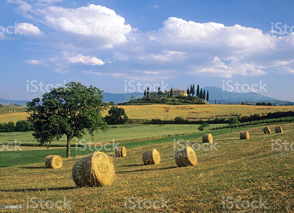 Tuscan landscape with hay bales royalty-free stock photo