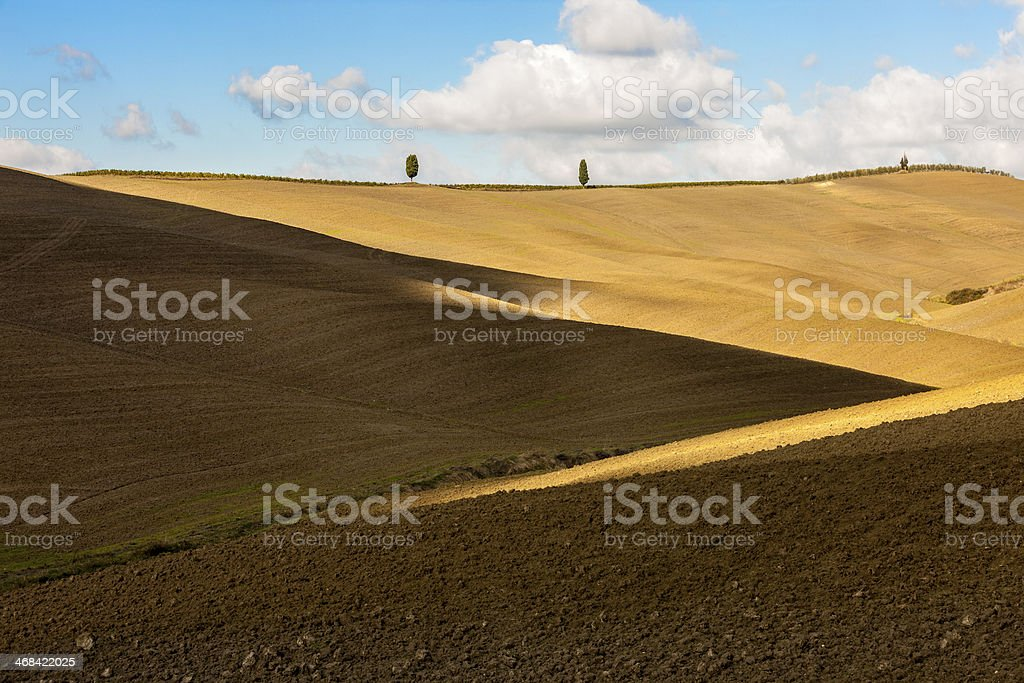 Tuscan Landscape With Lights, Shadows And Lonely Cypress Trees royalty-free stock photo