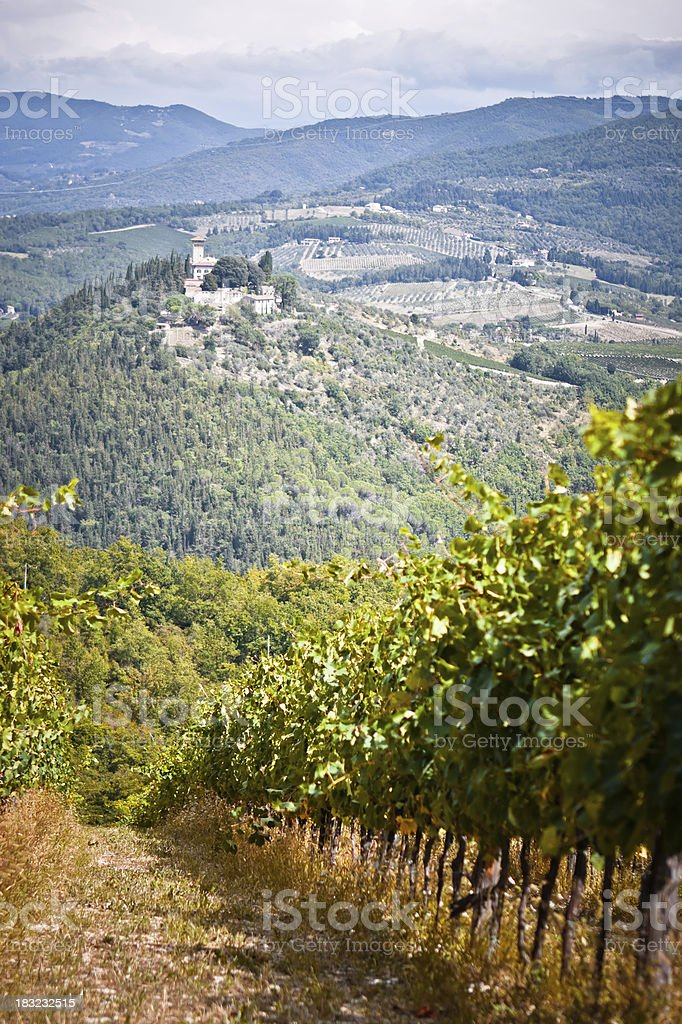 Tuscan Landscape with Vineyards and Castle, Chianti Region stock photo