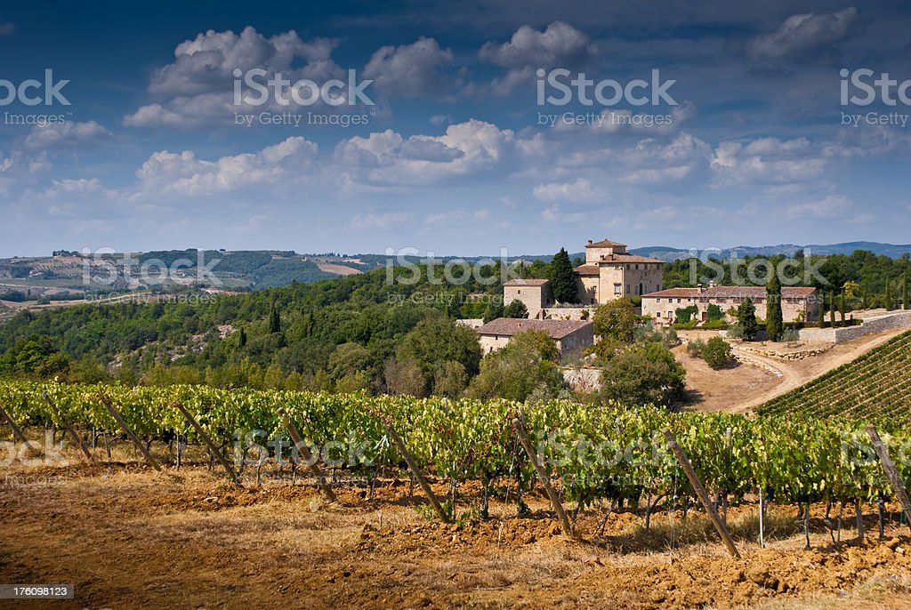 Tuscan Landscape with Vineyards and Olive Groves royalty-free stock photo