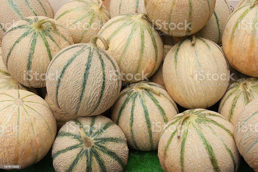 Tuscan Melon Cantalopes at Farmers Market stock photo
