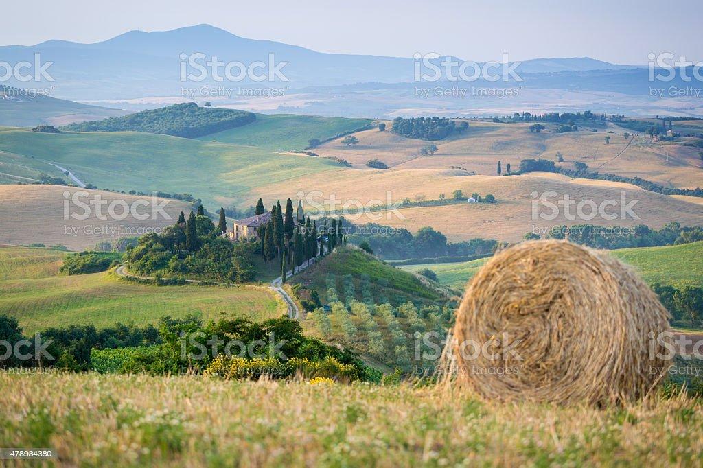 Tuscan Morning stock photo