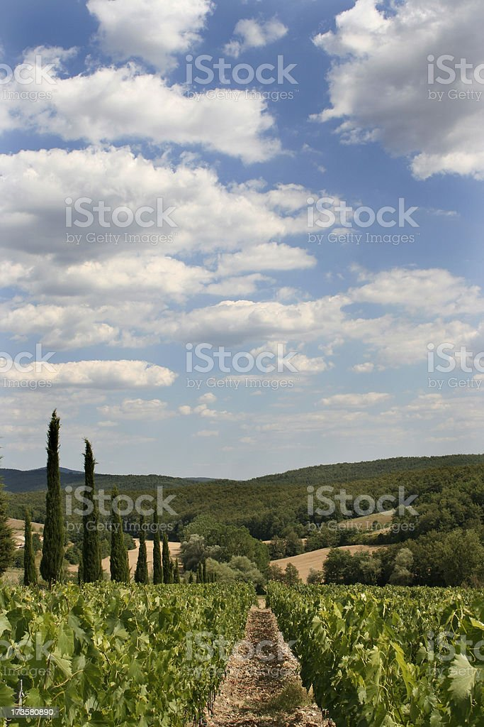 Tuscan skyline 01 royalty-free stock photo
