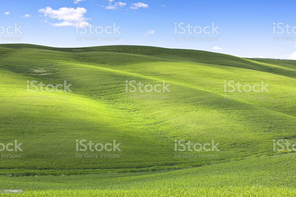 Tuscan Val d'Orcia background royalty-free stock photo