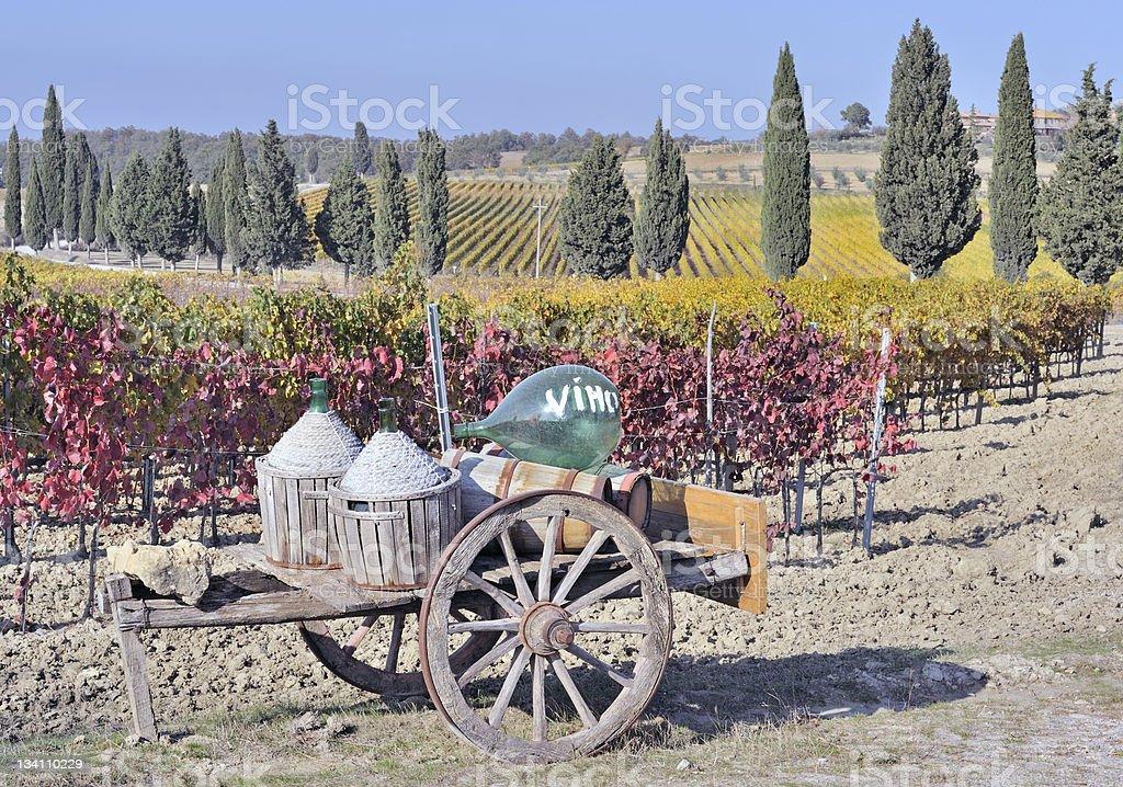 Tuscan vineyard in fall royalty-free stock photo