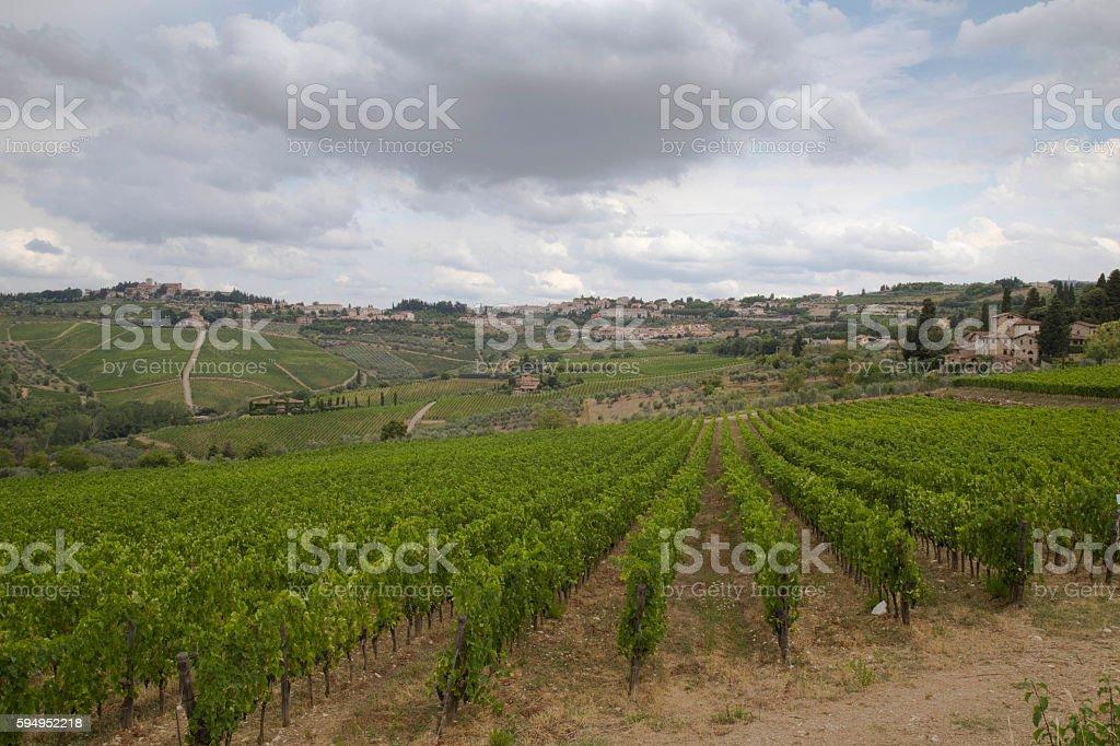 Vino de la Toscana stock photo