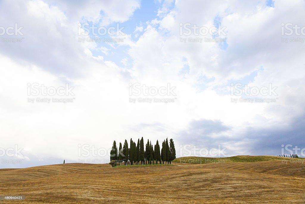 Tuscany before the storm stock photo