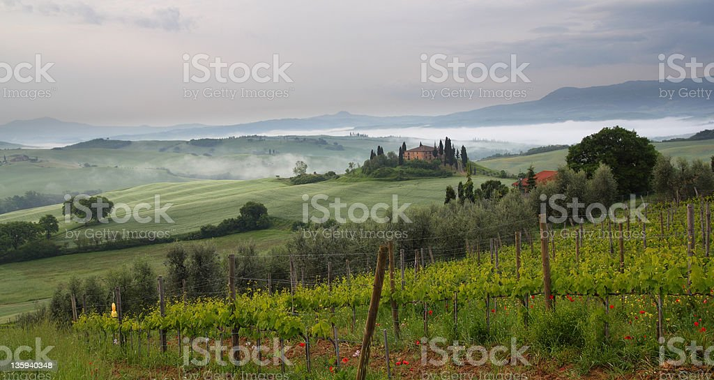 Tuscany belvedere early morning stock photo