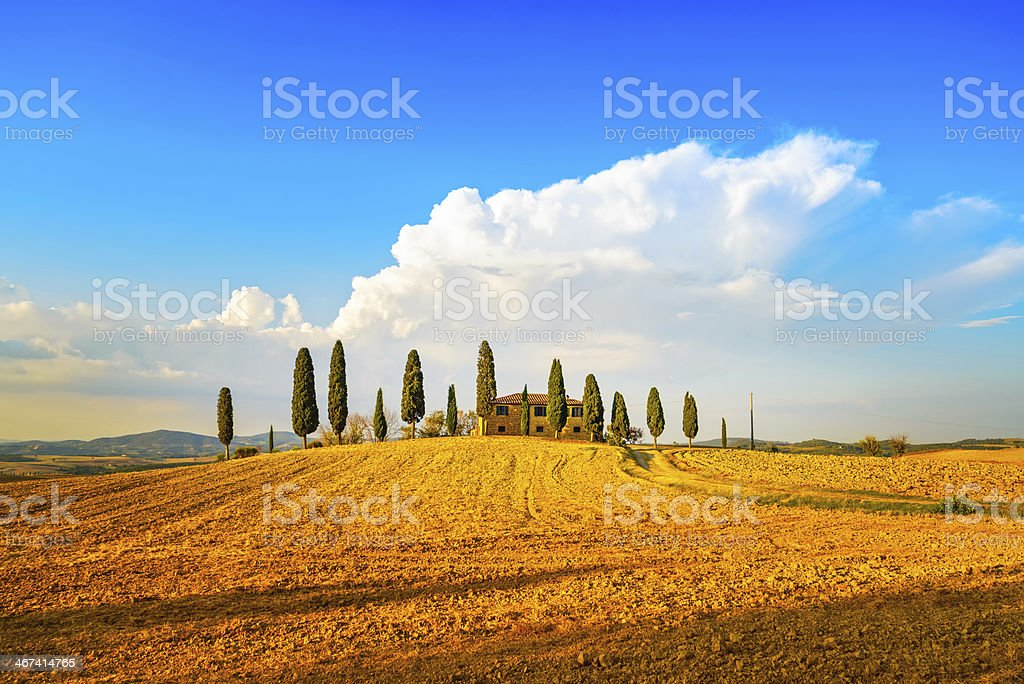 Tuscany, farmland, cypress trees and  road. Siena, Val d Or stock photo