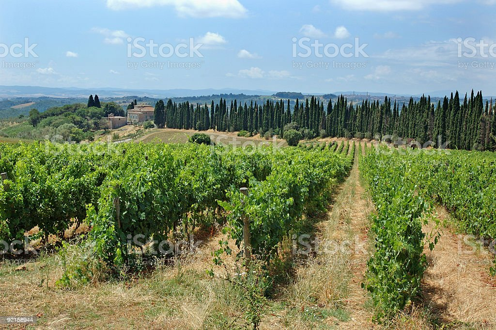 Tuscany II royalty-free stock photo