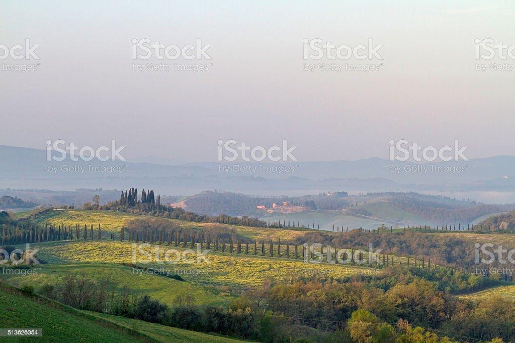 Tuscany in morning stock photo