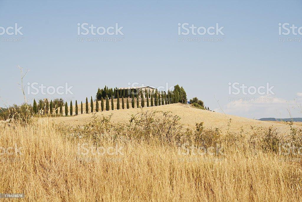 Tuscany in summer royalty-free stock photo