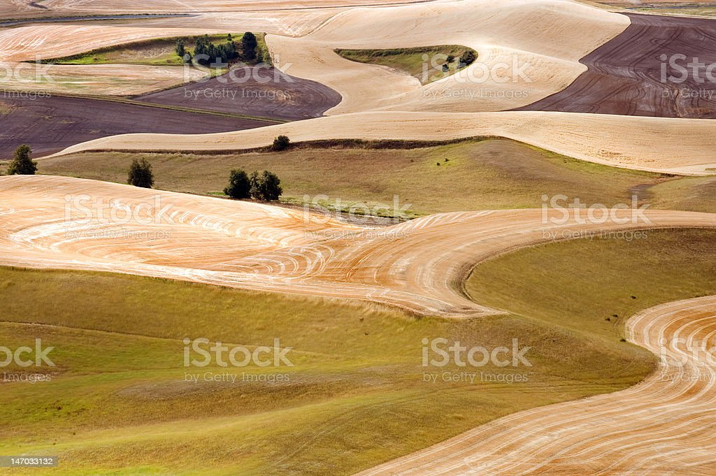 Tuscany in Washington state stock photo