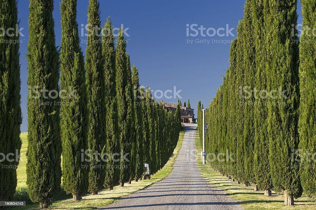 Tuscany - Italy royalty-free stock photo
