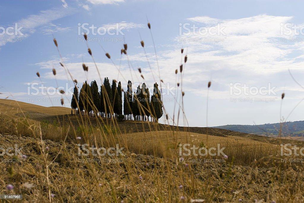 Tuscany Land royalty-free stock photo
