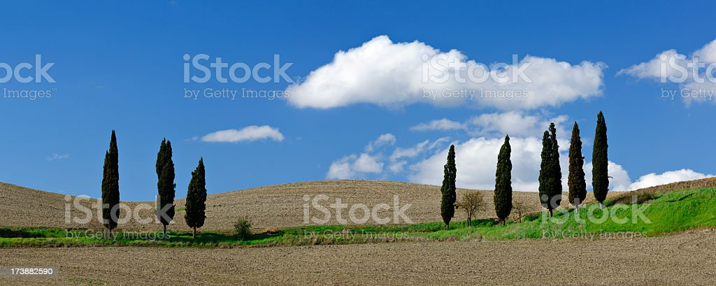 Tuscany Landscape in Spring stock photo