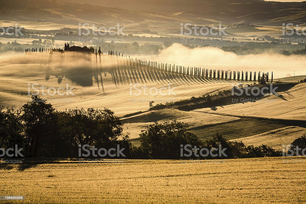 Tuscany Landscape in the morning royalty-free stock photo