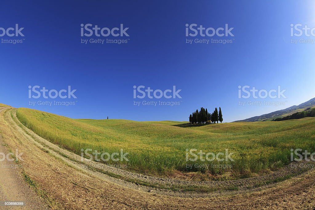 Tuscany landscape of Val d'Orcia, Italy. royalty-free stock photo