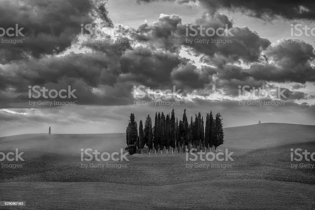 Tuscany - Landscape panorama, hills and meadow, Toscana - Italy stock photo