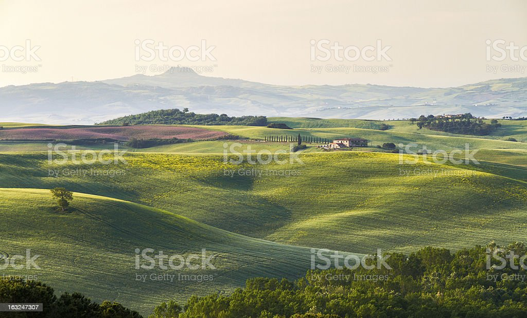 Tuscany landscape with farm, Val d'Orcia, Italy royalty-free stock photo
