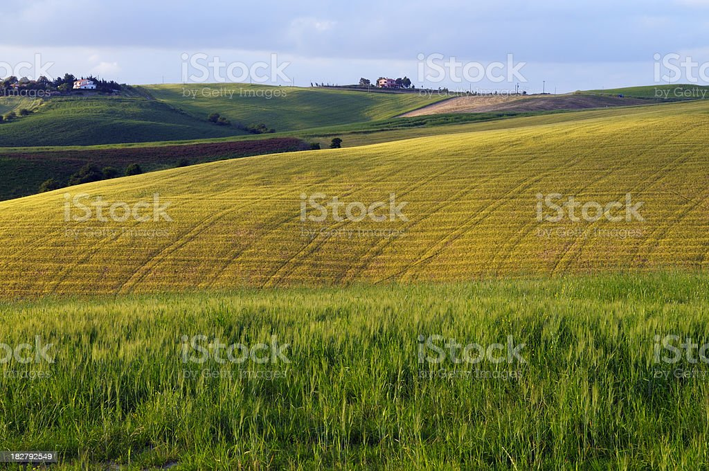 Tuscany Landscape with Plowed Fields at Sunset royalty-free stock photo