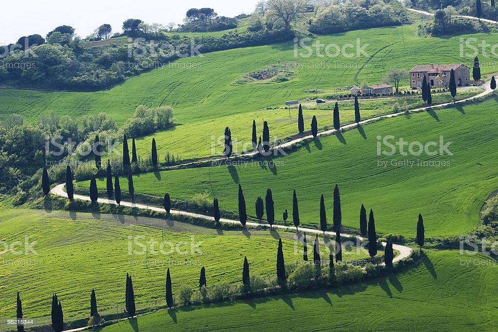 tuscany nature royalty-free stock photo