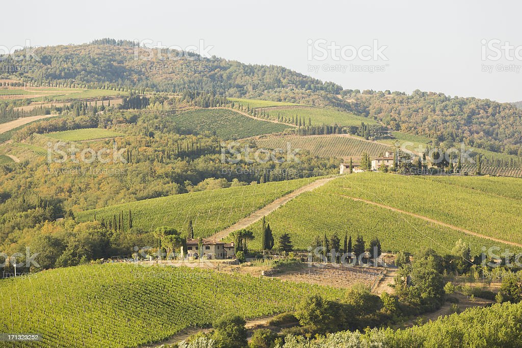 Tuscany royalty-free stock photo