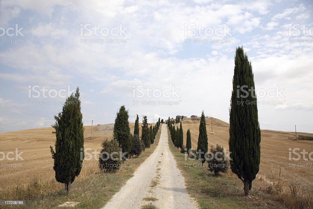 Tuscany: Road royalty-free stock photo
