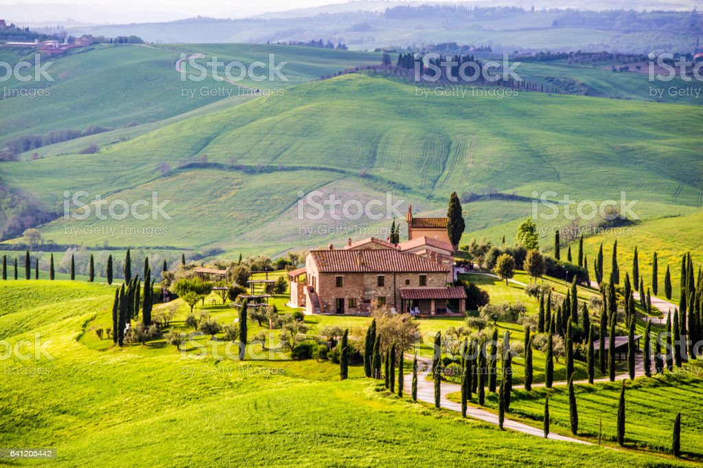 Tuscany, rolling hills spring landscape stock photo