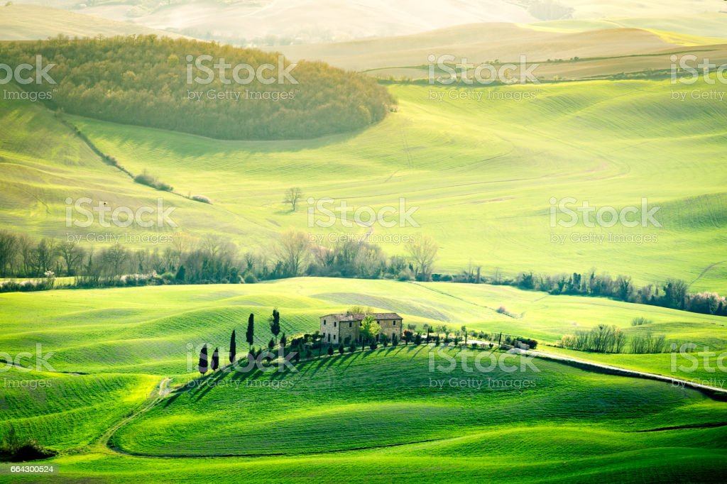 Tuscany, spring landscape, rolling hills at sunset stock photo