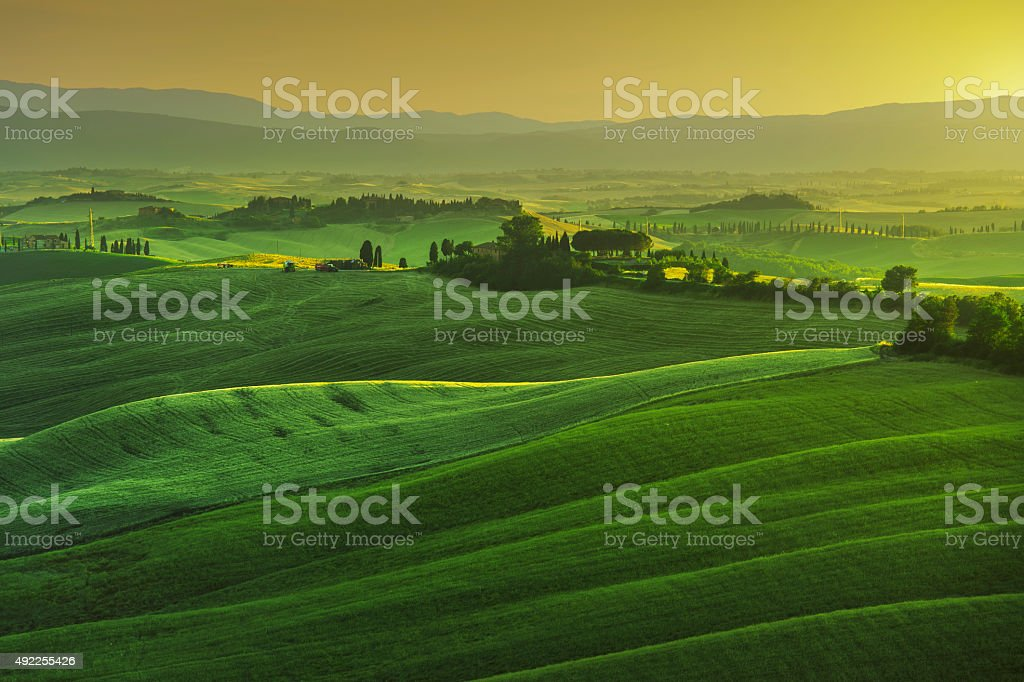 Tuscany spring, rolling hills on misty sunset. Rural landscape. stock photo