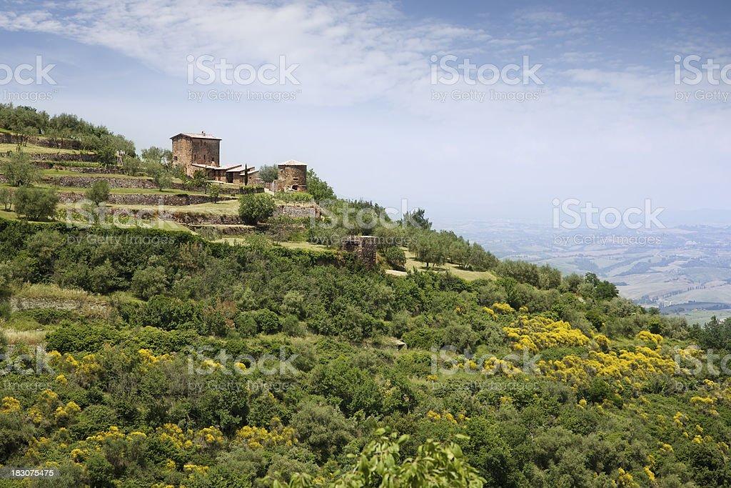 Tuscany summer landscape royalty-free stock photo