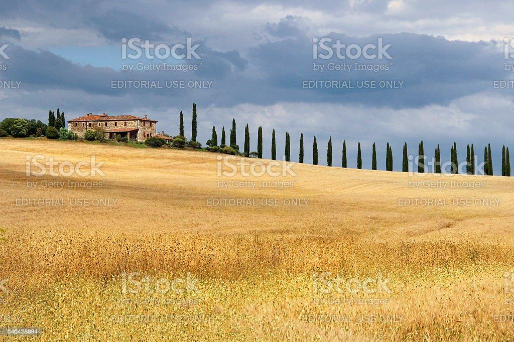 Tuscany Villa Fall with Cypress Trees stock photo