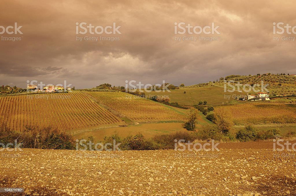 Tuscany Vineyards in Fall Rainy Day stock photo