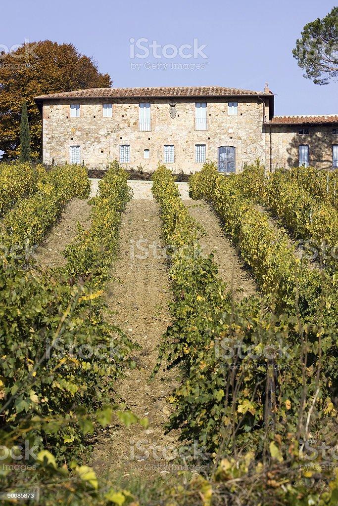 tuscany vineyards royalty-free stock photo