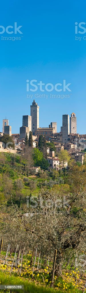 Tuscany vineyards picturesque hilltop town medieval towers San Gimignano Italy stock photo