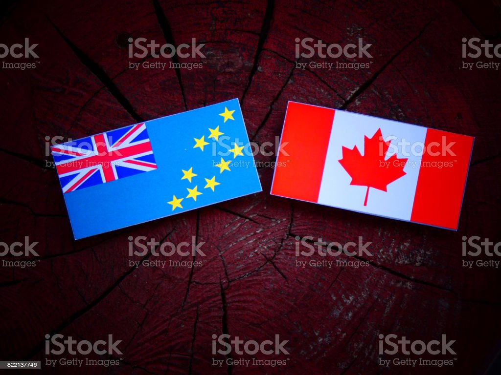 Tuvalu flag with Canadian flag on a tree stump isolated stock photo