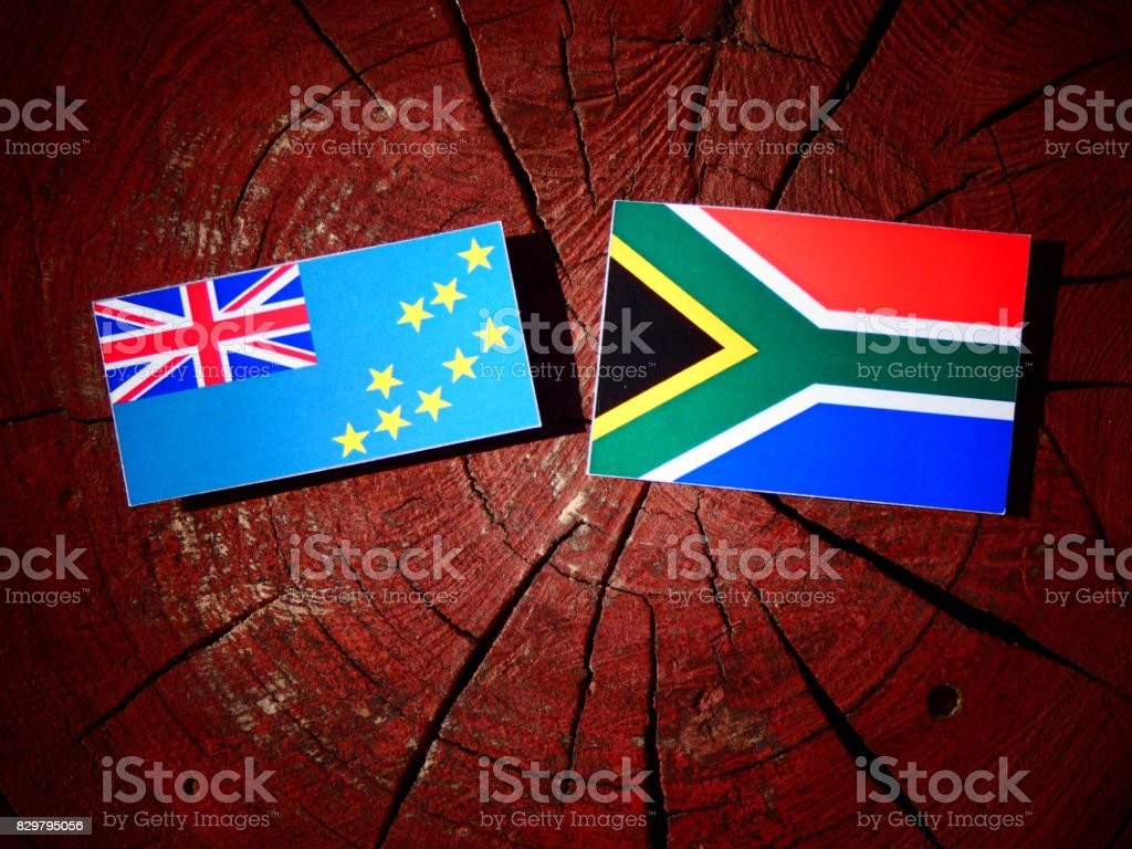 Tuvalu flag with South African flag on a tree stump isolated stock photo
