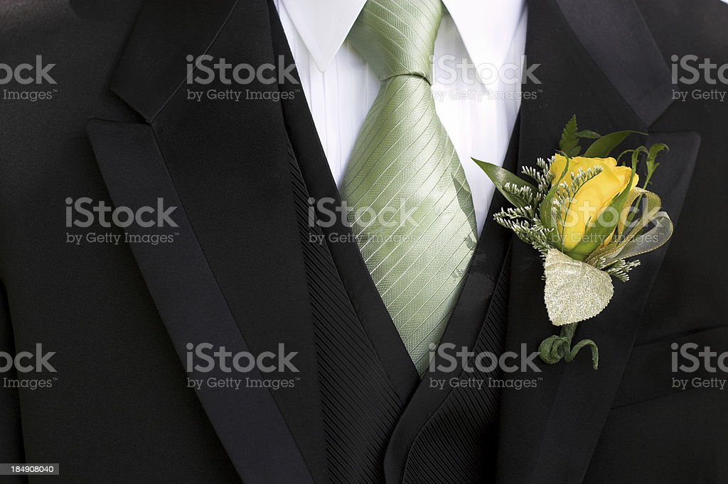 Tuxedo royalty-free stock photo