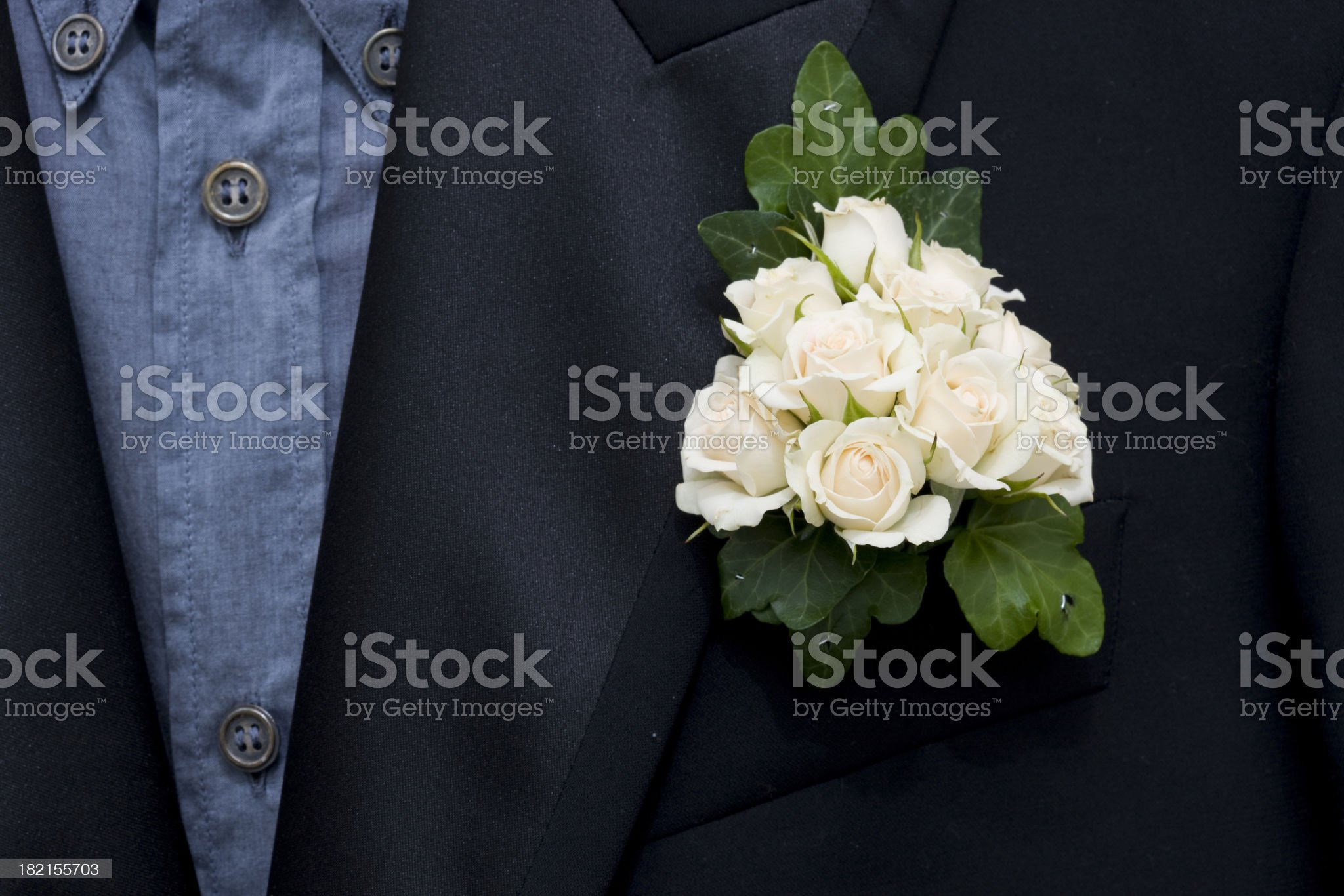 Tuxedo with Boutonniere royalty-free stock photo