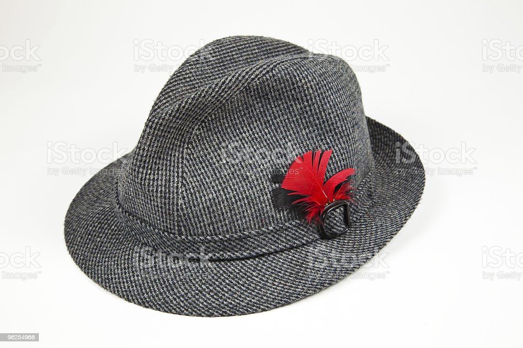Tweed hat with Red Feather royalty-free stock photo