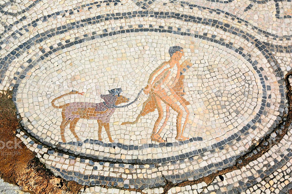 Twelfth Labour of Hercules, mosaic in Volubilis, Morocco stock photo
