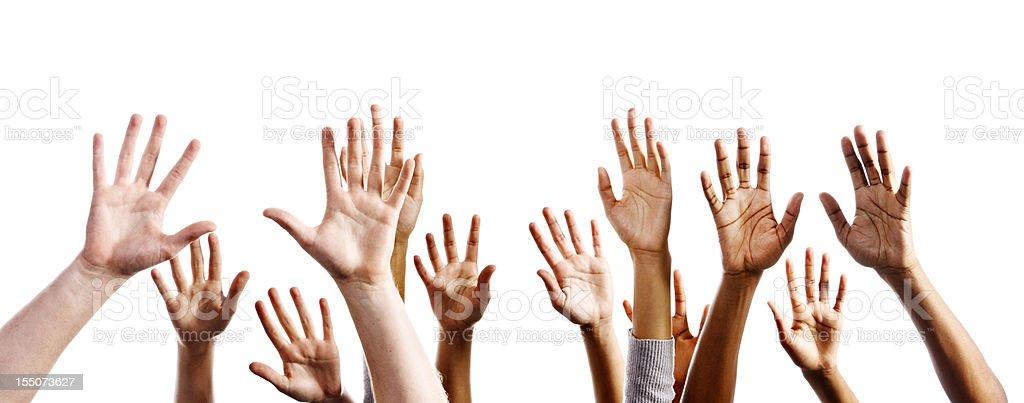 Twelve mixed hands raised in praise or joy against white stock photo
