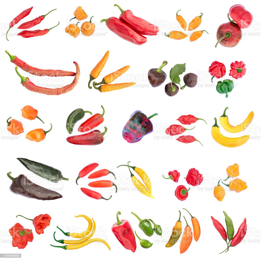 Twentyfour Varieties of Chili Pepper isolated on white background stock photo