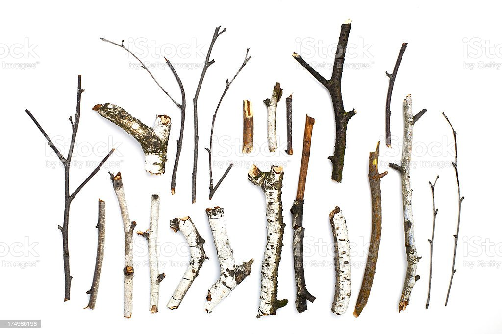 twigs and sticks on white background stock photo