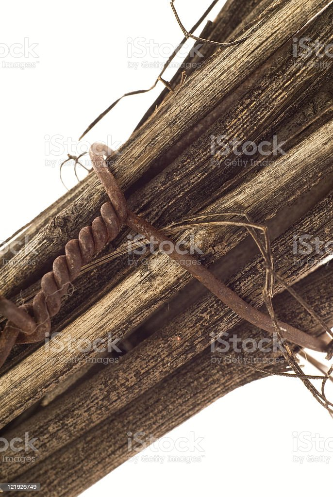 Twigs Connection royalty-free stock photo