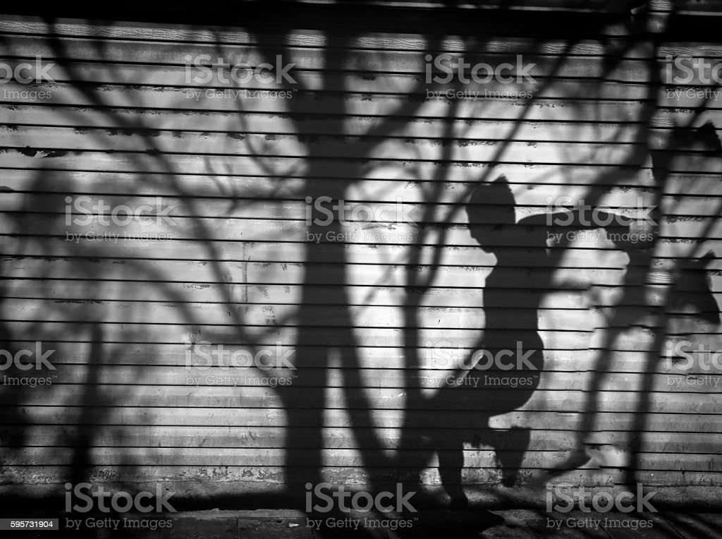Twilight a man and tree shadow reflected on the wall. stock photo