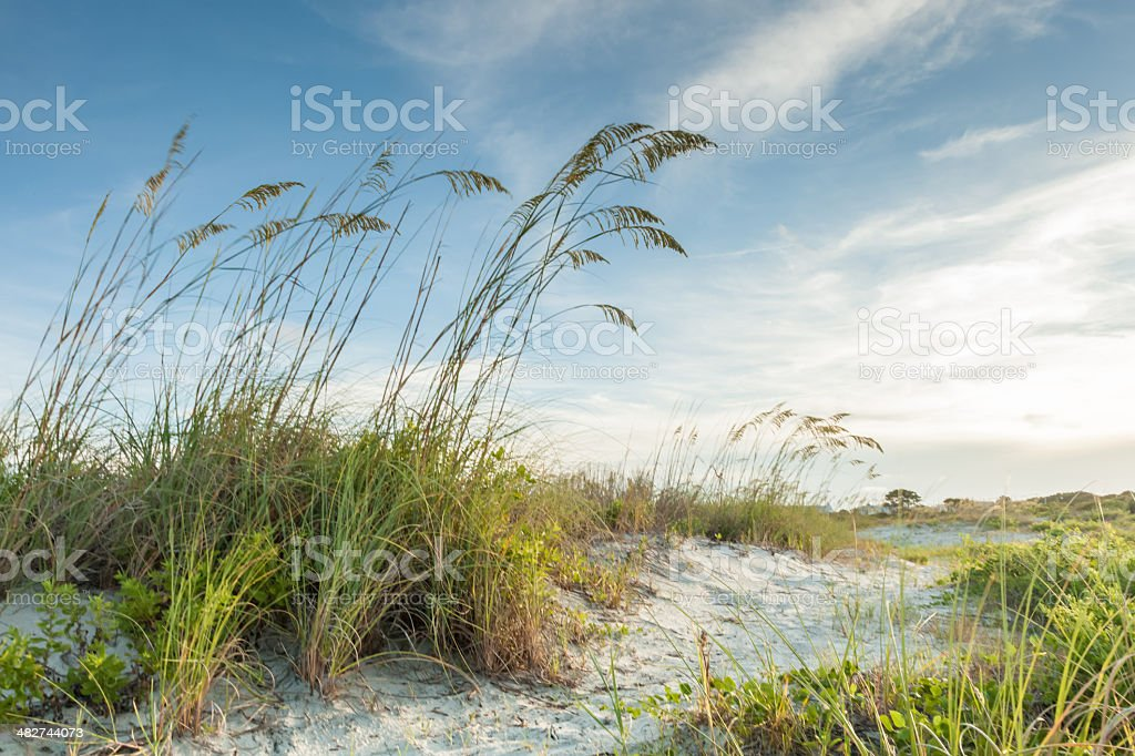 Twilight Dunes Path stock photo